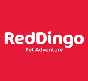 RedDingo Pet Adventure Brand - PetworldPanama